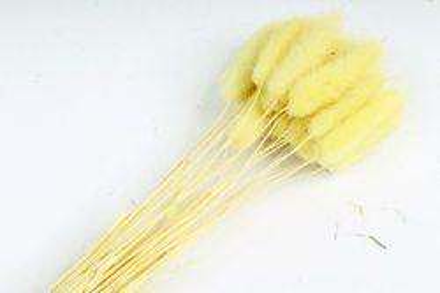 Лагурус (Н) (30шт/пач) лимонный 2371