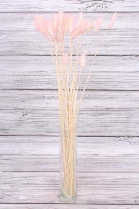 Лагурус (25шт/пач), палевый розовый 7950Н