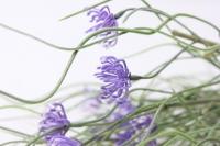 ленок сиреневый ga 143 - искусственные растения