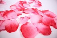Лепестки Роз 1745 (микс розово/красные ) в пакете 100шт