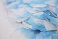 лепестки роз ( бело-голубые) в пакете