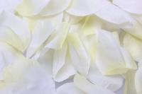 лепестки роз лепестки роз (микс цветов белый, желтый) в пакете 7912