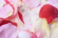 лепестки роз лепестки роз (микс цветов розовый,красный,кремовый) в пакете 7914
