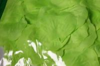 лепестки роз (салатовые) в пакете 100шт 1752