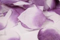 лепестки роз ( сиренево-белые ) в пакете