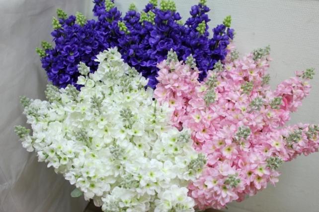 левкой сиреневый  80см - цветы искусственные