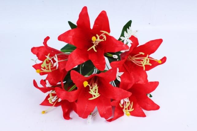Лилии  красные
