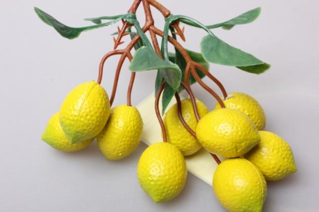 Лимон на ветке