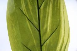 Лист Геликонии 60 см А47