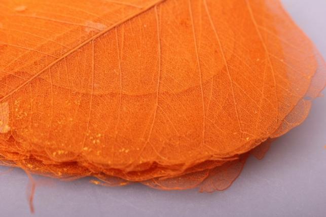 листья скелетизированные 9х9см (50шт) оранжевый