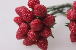 искусственные фрукты малина красная 1,2см (12 пучков по 12 шт) искусственные фрукты 7742