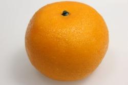 мандарин искусственный 9см