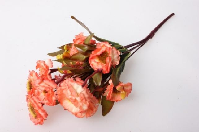 Маргаритки пастель лосось/оранжевый букет 30см