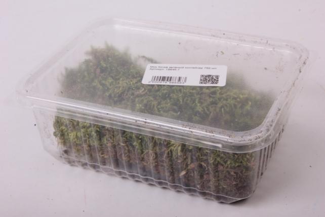 мох кочка зеленый контейнер 750 мл