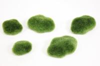 мох зеленый в упаковке 5шт kwla221 7135