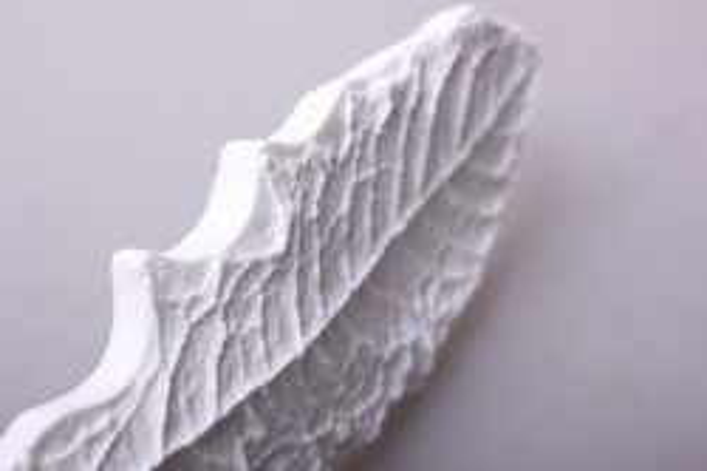 молд 17х6см - лист одуванчик 0724