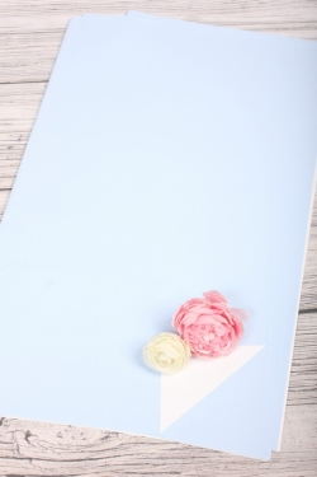 Набор пленки матовой двусторонней, 10 листов 58*58см, цв.белый/голубой 5901Н