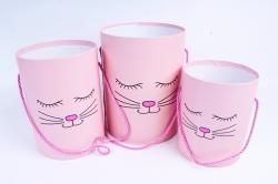 Набор подарочных коробок (3 шт) Цилиндр с Мордочкой без крышки розовый под цветы   В51
