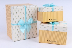 Набор подарочных коробок  из 3 шт - Прямоугольник с цветами бежевый   М22А