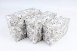 """Набор подарочных коробок из 3шт - Прямоугольник """"Чешуйки"""" SY7486-1"""