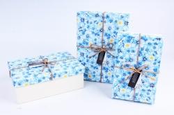 Набор подарочных коробок из 3шт - Прямоугольник Голубые Ромашки 23*16*10см R35