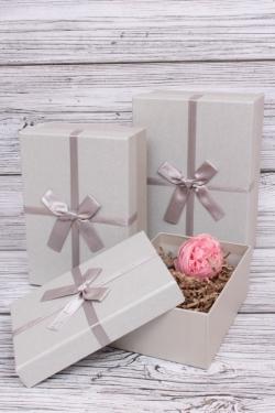 Набор подарочных коробок из 3шт - Прямоугольник перламутр серый 22*15*9см  В191