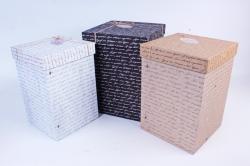 Набор подарочных коробок из 3шт - Прямоугольник Почтовые №66   Пин66ПТ  (М)