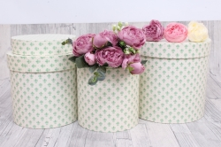 Набор подарочных коробок  из 3 шт - Цилиндр Лилии зеленые   №150   20*20см  Пин150ЛЗ