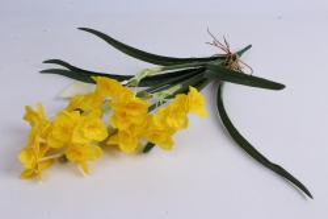 Нарцисс растение 44 см жёлтый LCMG095
