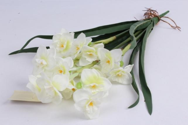 Нарцисс растение 44 см шампань LCMG095