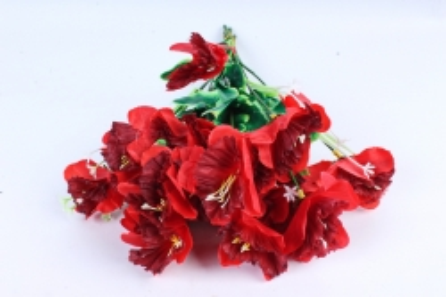 Нарциссы  красные