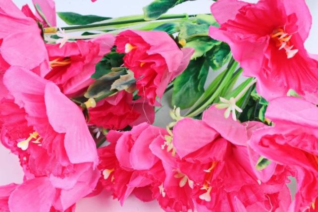 Нарциссы розовые