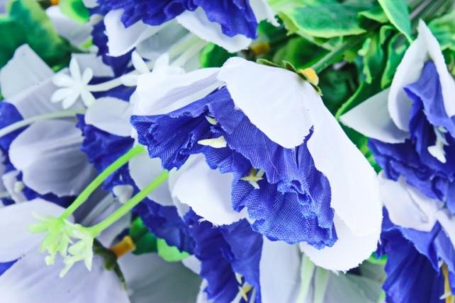 Нарциссы  синие