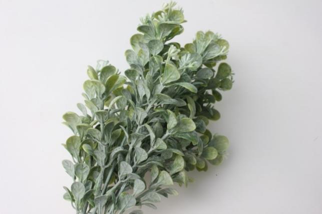 незабудка белая - искусственные растения