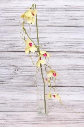 Орхидея ампельная салатовая 100 см SUN423