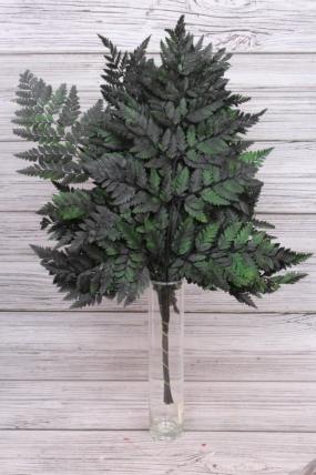 Папоротник (10шт), натур.зеленый 8308Н