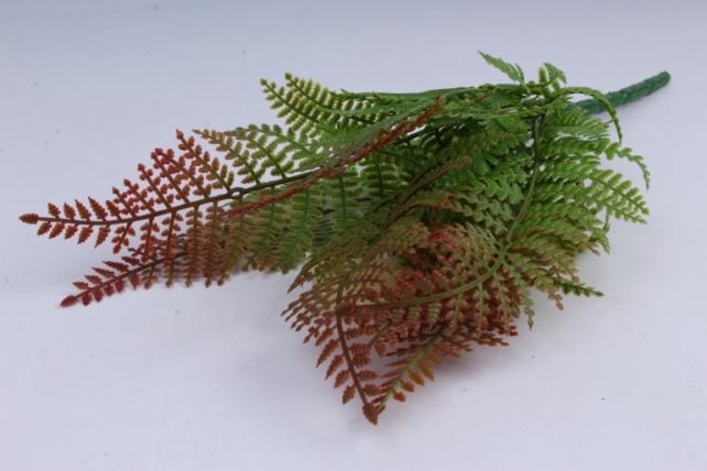 Папоротник зелено-коричневый 30 см
