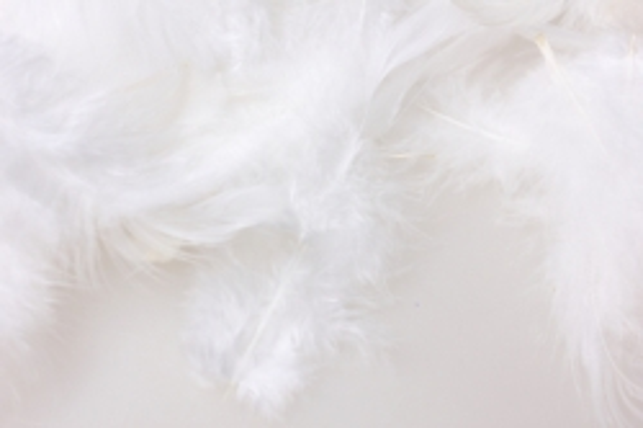 перья белые в пакете 10гр 1863