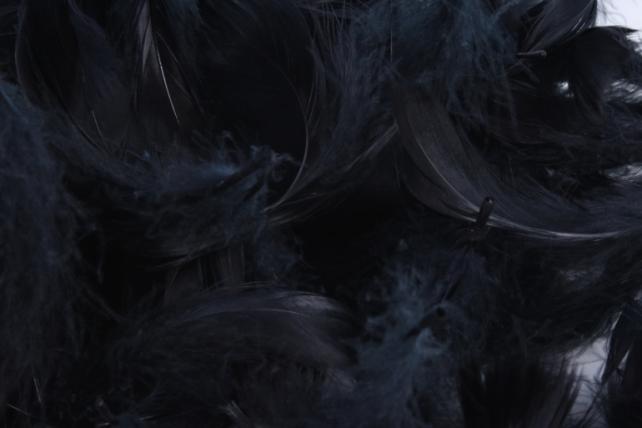 Перья черные в пакете 10гр 1870