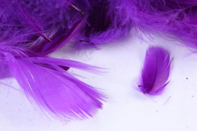 Перья фиолетовые в пакете 10гр       Арт00067524