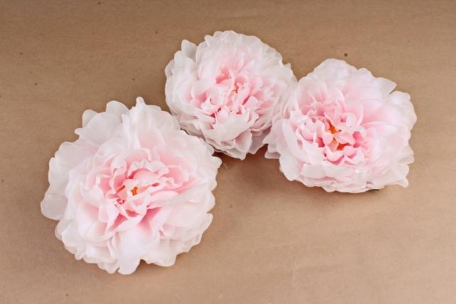 Пион   цвет жемчужно-розовый 2031 (3 шт в уп) SUN406