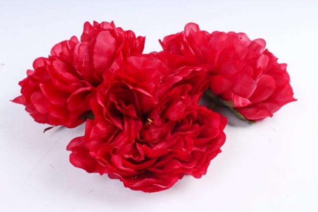 Пион  цвет красный 163 (3 шт в уп) SUN406