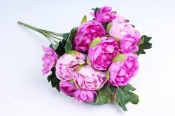 Пионы малиново-розовые