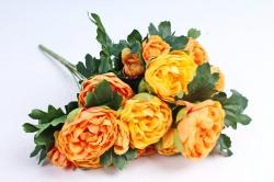 Пионы оранжевые
