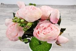 Пионы Ретро низкие бело-розовые 30 см