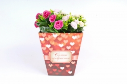 Плайм пакет  Романтика Сердце красное00080657