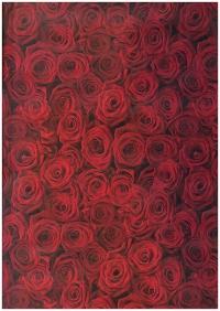 Подарочная Бумага - Белый  КРАФТ Чайные розы 0,7х1м в листах (10 листов)  М