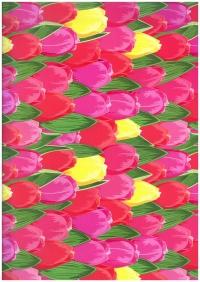 Подарочная Бумага - ГЛЯНЕЦ 100/326 Тюльпаны В Голландии 0,7х1м (10 листов)
