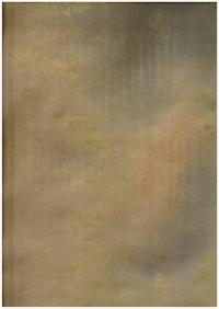 Подарочная Бумага Крафт Пушкин золото (60гр х700мм, рулон 10м) Беларусь
