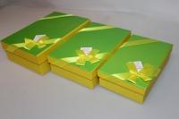 Подарочные коробки - (набор из 3шт) Прямоугольник с бантом 22х15х6,5см CF-0028-3